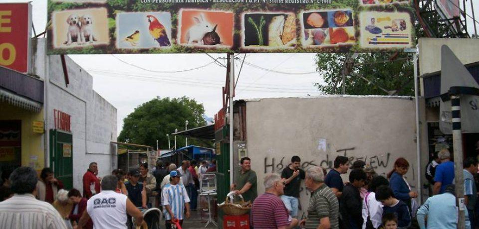 la entrada sobre Sáenz de la popular y cuestionada Feria