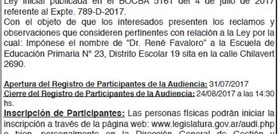 Audiencia Publica 29/08