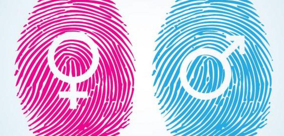 Documento sobre la identidad de género