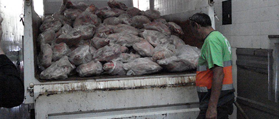 Frigorífico clandestino: Decomisan 300 kgs. de comida en Balvanera